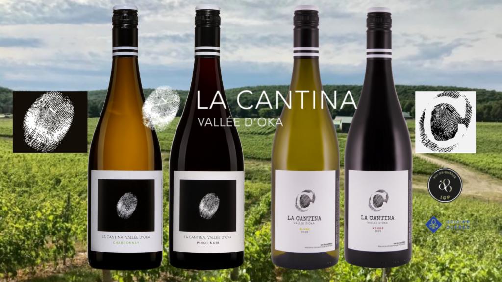 BOuteilles de La Cantina Chardonnay, Pinot Noir, blanc et rouge. avec vignobles.