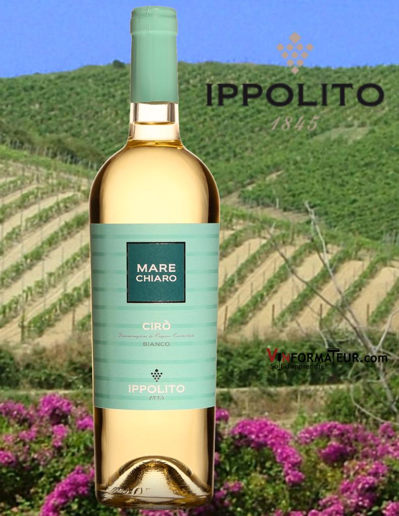 BOuteille de Mare Chiaro, Ciro, Italie, Calabre, Cantine Vincenzo Ippolito, vin blanc, 2020 avec vignobles en arrière-plan