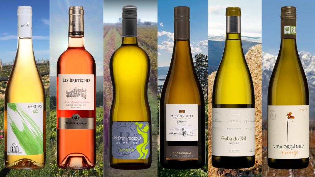BOuteilles de Les Brétèches vin rosé, Veritas Bianco, Bottero di Cello Bianco, Mission Hill Chardonnay, Gaba do Xil Godello, Vida Organica Sauvage