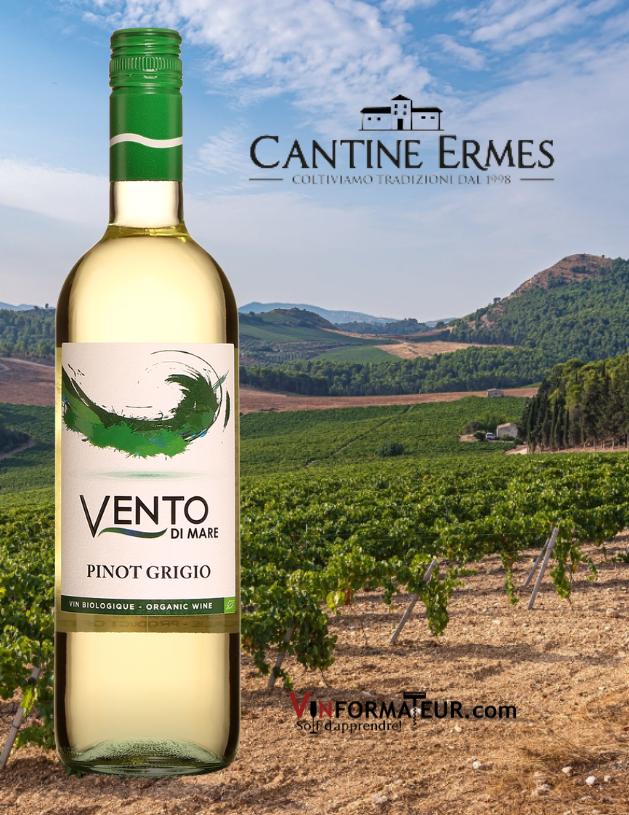 Vento di Mare, Pinot Grigio, Italie, Sicile, Cantine Ermes, vin blanc bio, 2020