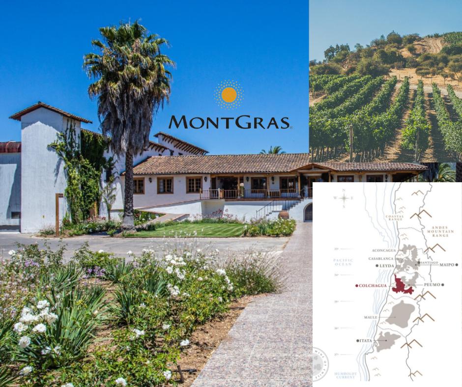Vina Montgras - chai, vignobles et carte viticole du Chili