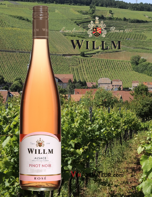 Bouteille Willm, Pinot Noir, Rosé, France, Alsace, 2020 avec vignobles