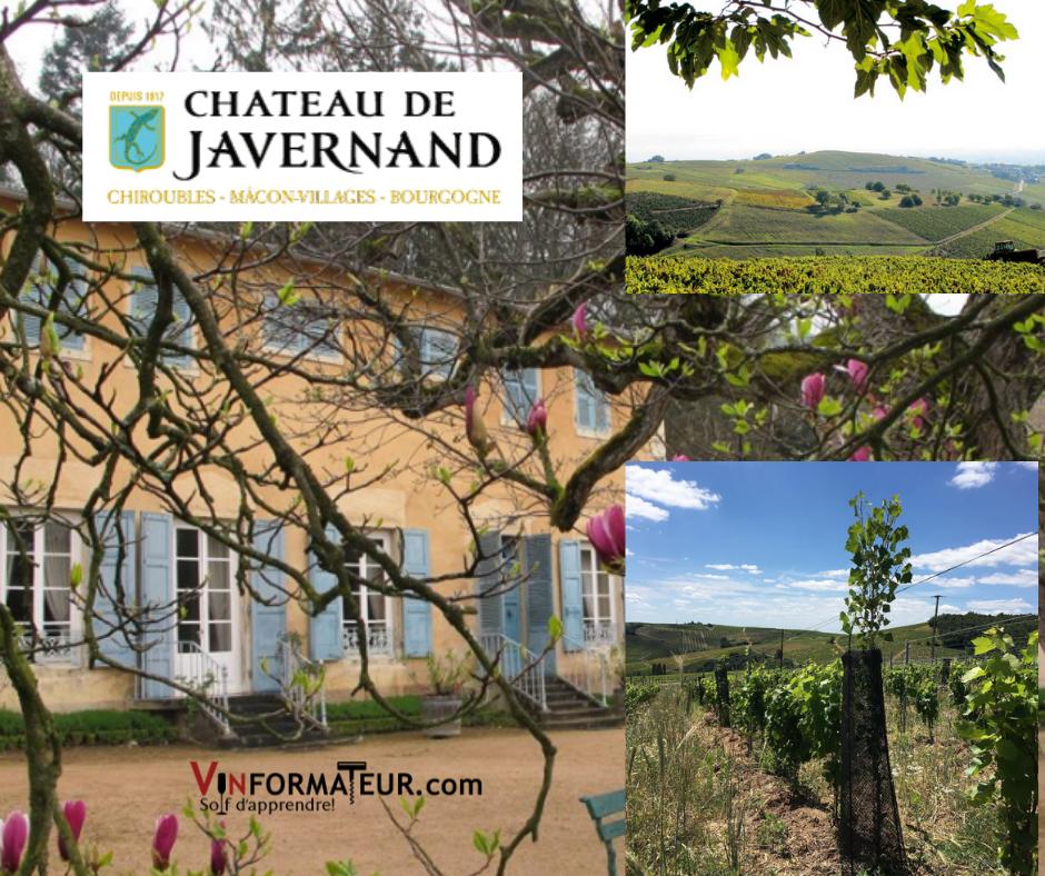Château de Javernand - chai et vignobles