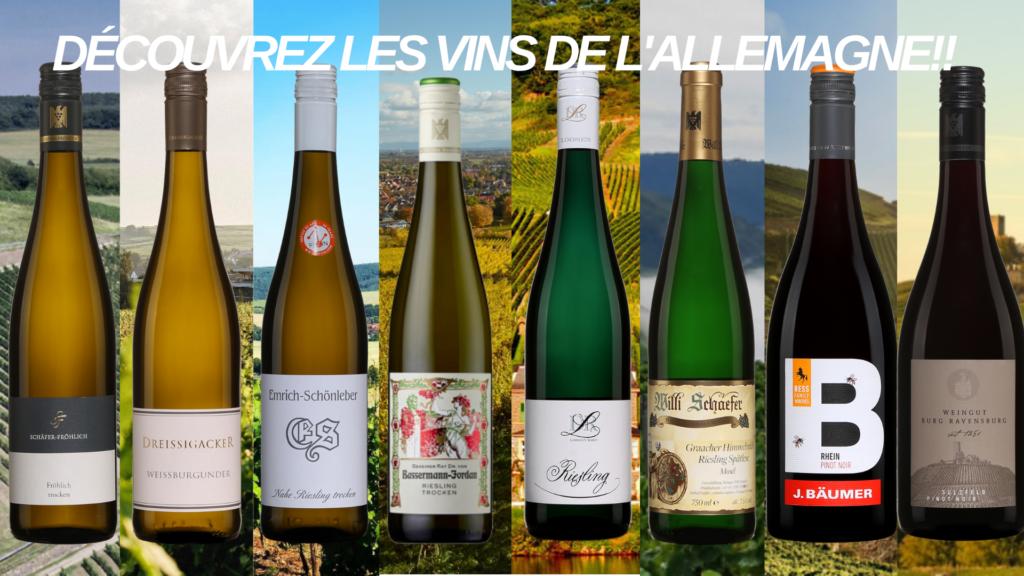 Huit vins de l'Allemagne à découvrir