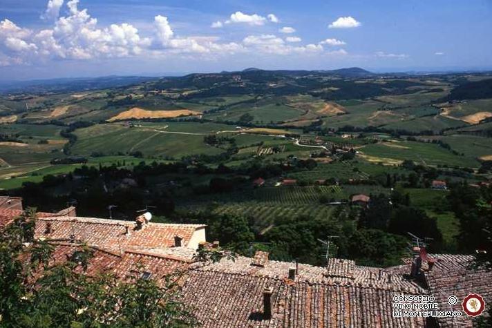 Vignobles Vino Nobile