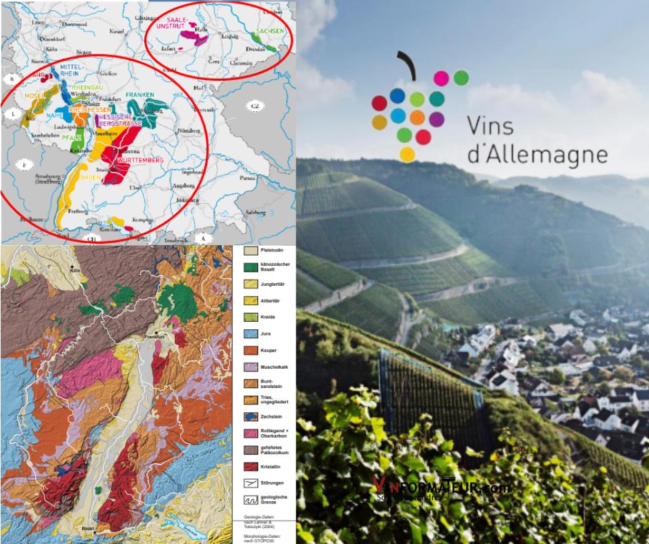 Régions productrices, composition des sols et vignobles Allemagne