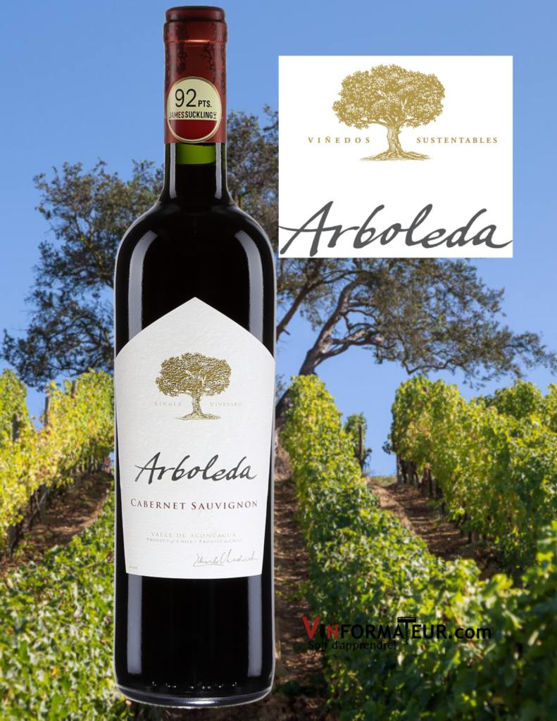 Bouteille de Arboleda, Cabernet-Sauvignon, Chili, D.O. Valle del Aconcagua, vin rouge, 2018 et vignobles