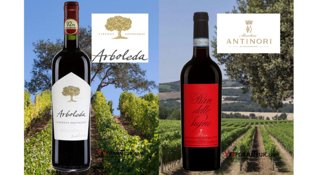 Bouteilles de Arboleda Cabernet Sauvignon 2018 et Pian delle Vigne Rosso di Montalcino 2019 et vignobles