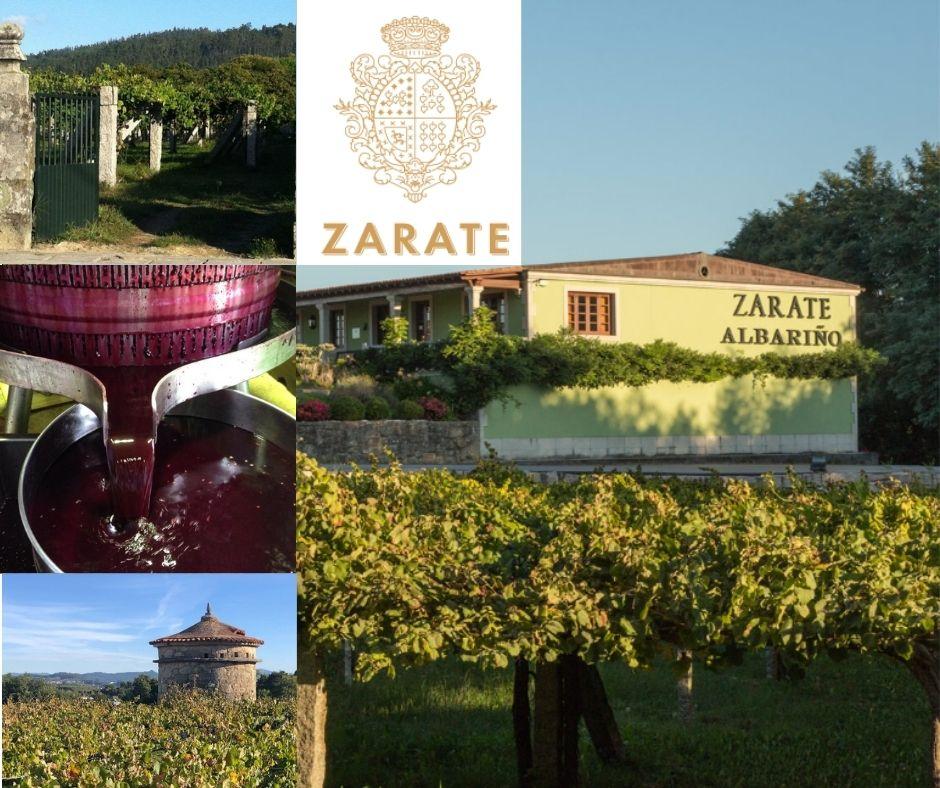 Bodegas Zarate, chai et vignobles