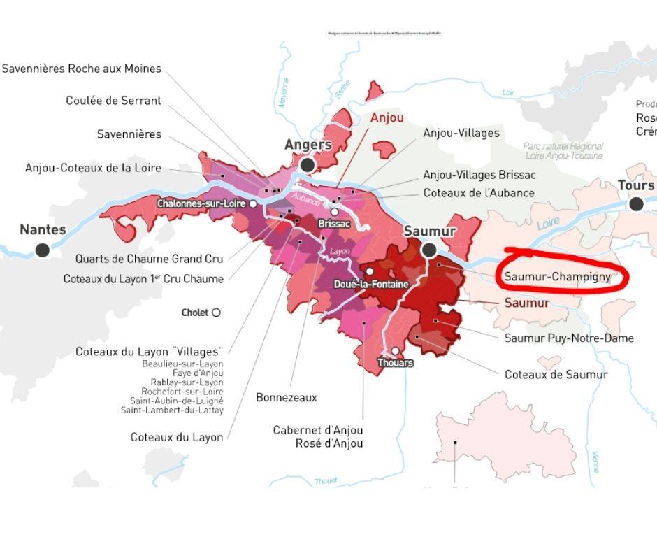 Carte viticole Val de Loire, Anjou-Saumur