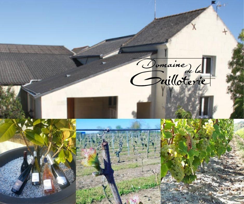 Domaine de la Guilloterie, vins, vignobles