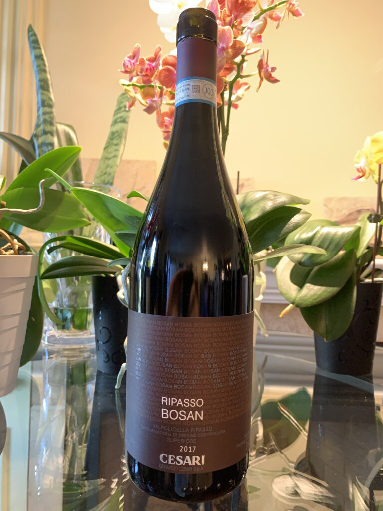 Bouteille de Bosan, Italie, Vénétie, Valpolicella Ripasso Superiore DOC, Gerardo Cesari, vin rouge, 2017