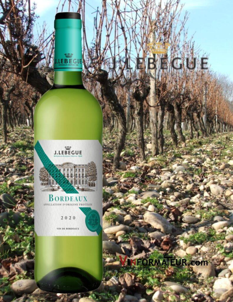 Bouteille de J. Lebègue, Graves Blanc, Bordeaux, 2019 avec vignoble