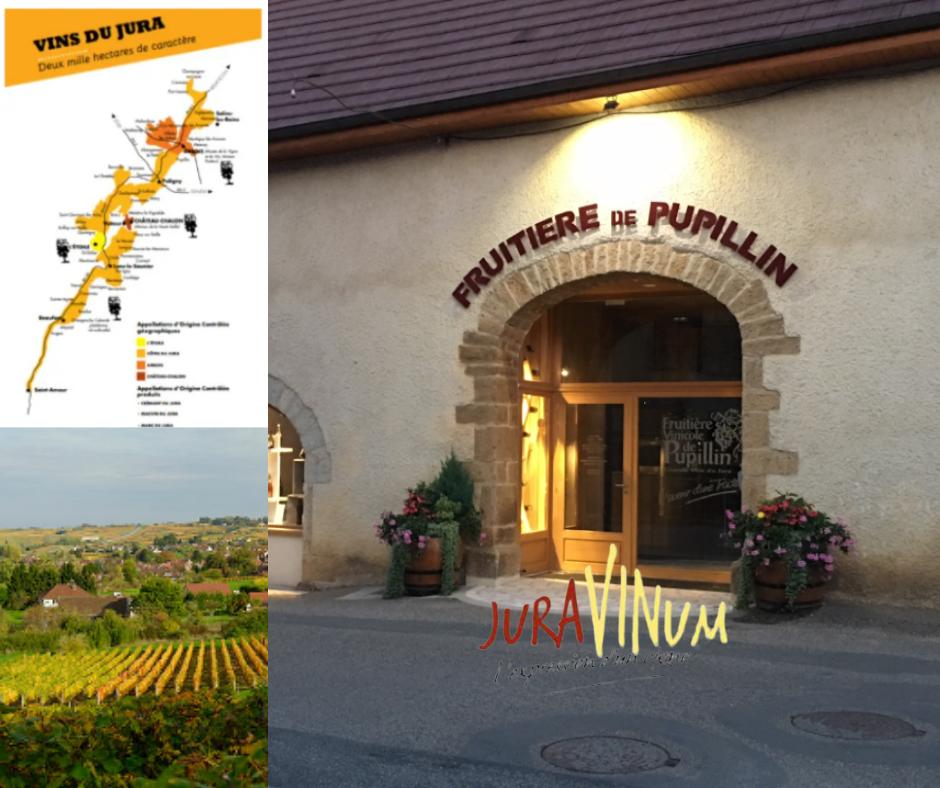 Juravinum - carte Jura, vignobles et magasin