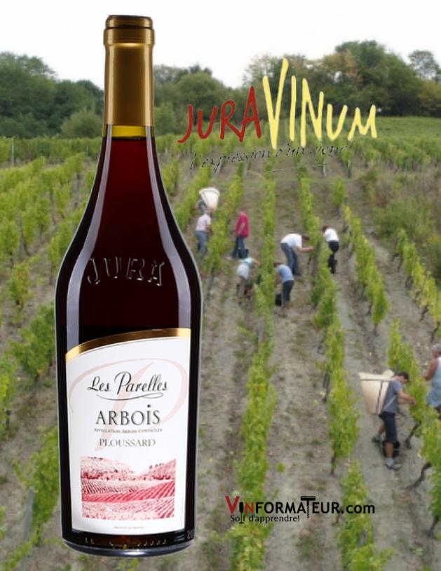 Bourgogne Les Parelles, Ploussard, France, Jura, Arbois, Juravinum, vin rouge, 2018