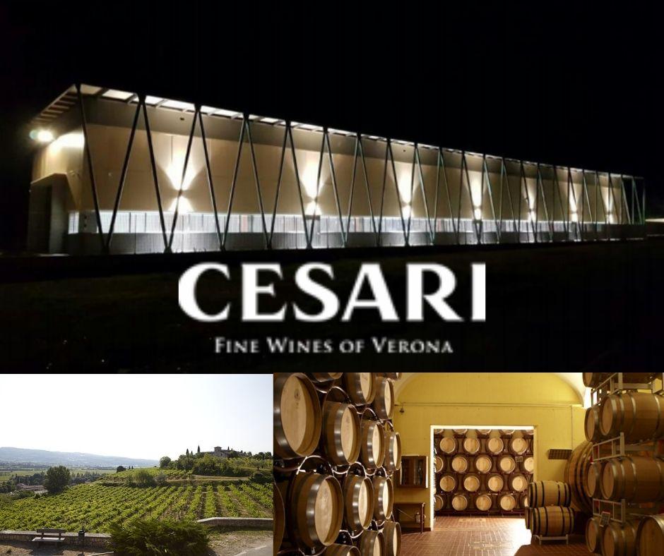 Maison Gerardo Cesari - chai, Fumane, vignobles