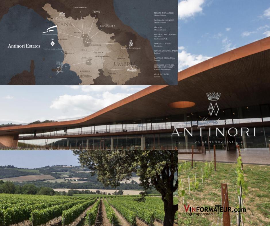 Marchesi Antinori carte viticole, chai et vignobles