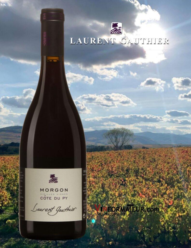 Bouteille de Morgon, Côte du Py, Vieilles Vignes, Beaujolais, Laurent Gauthier, vin rouge, Terra Vitis, 2018