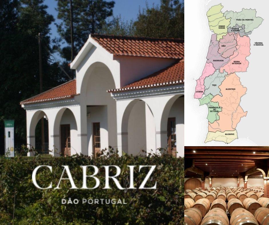Cabriz, chai et carte viticole du Portugal