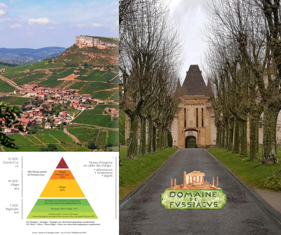 Domaine de Fussiacus - carte viticole, vignobles et château