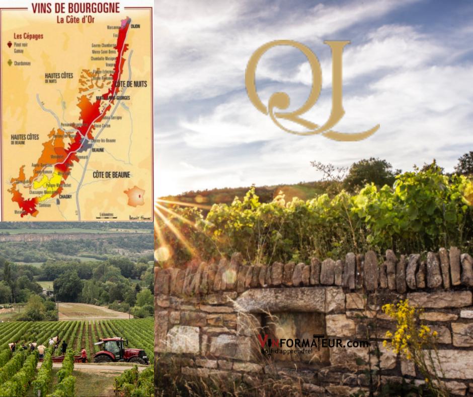 Domaine Jeannot carte viticole, vignoble et murs du vignoble