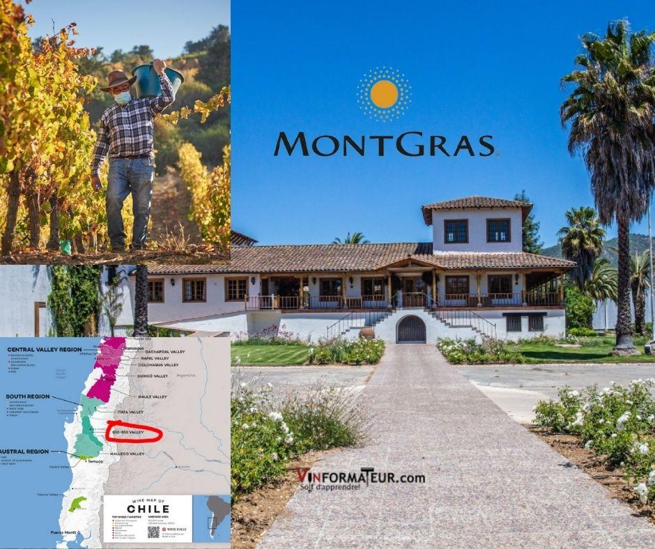 Vina Montgras, vignobles, chai