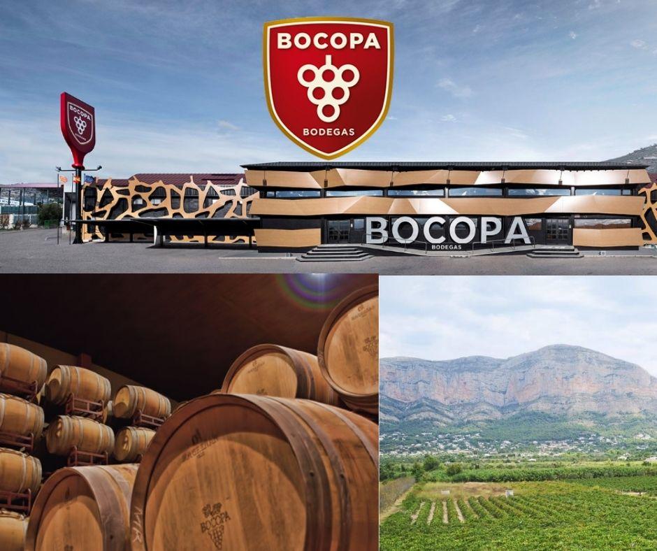 Bodegas Bocopa, bureaux, chai et vignobles