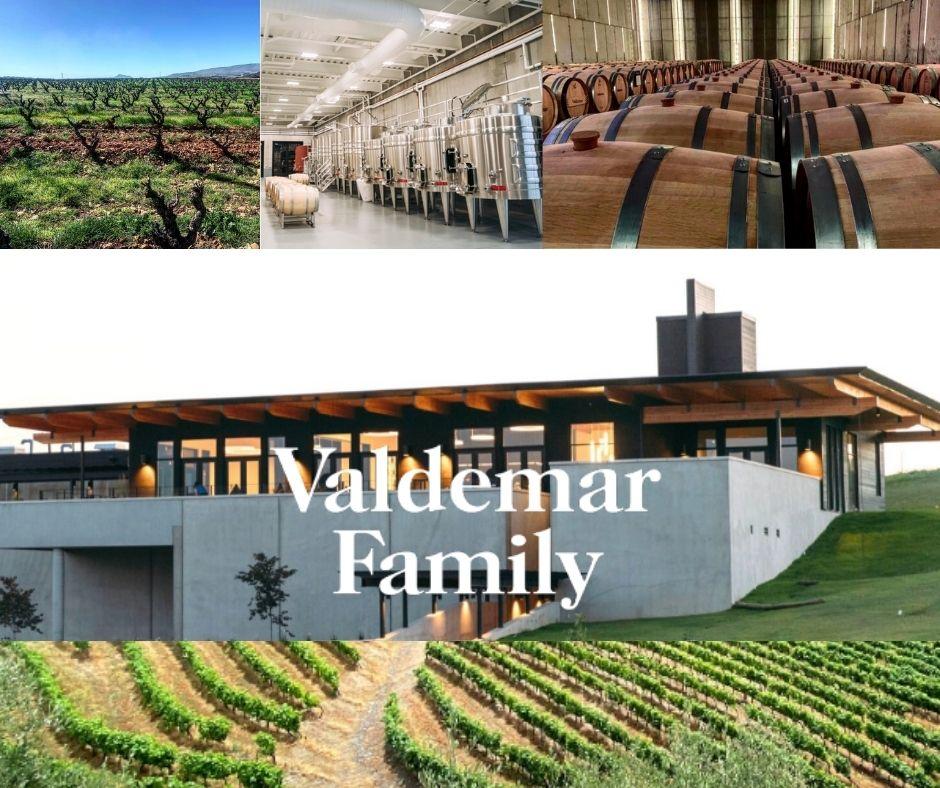 Bodegas Valdemar, vignobles, chai