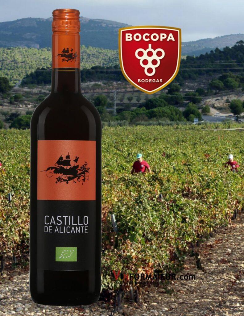 Bouteille de Castillo de Alicante, Espagne, vin rouge bio, 2020 avec vignobles