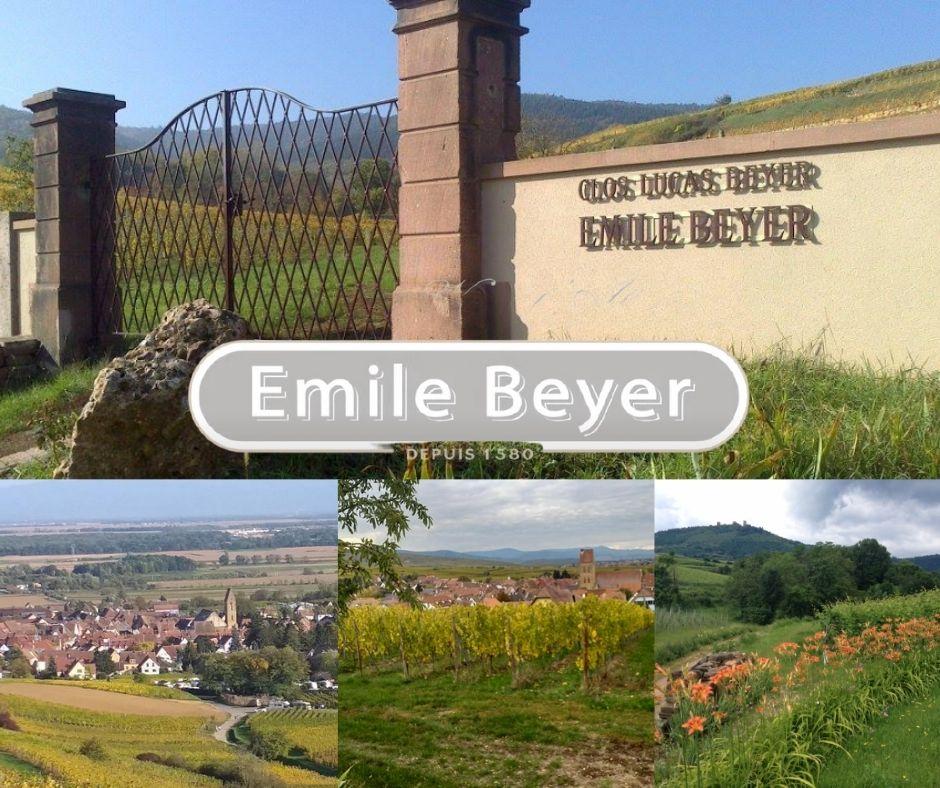 Emile Beyer, chai, vignobles