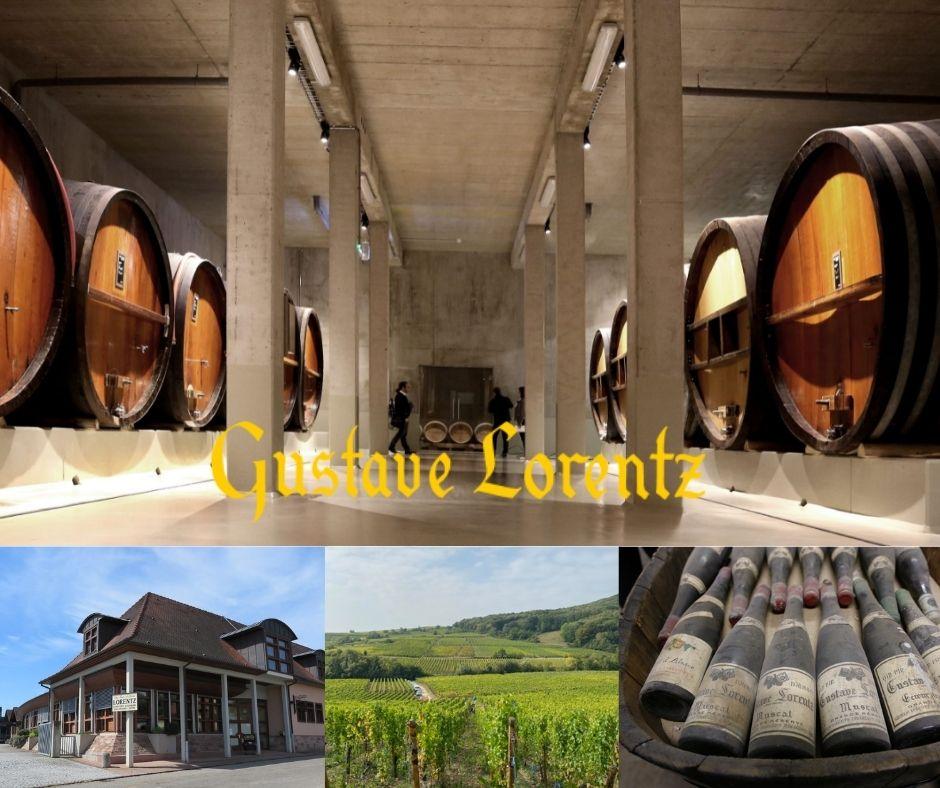 Domaine Gustave Lorentz, chai, vignobles, vieux vins