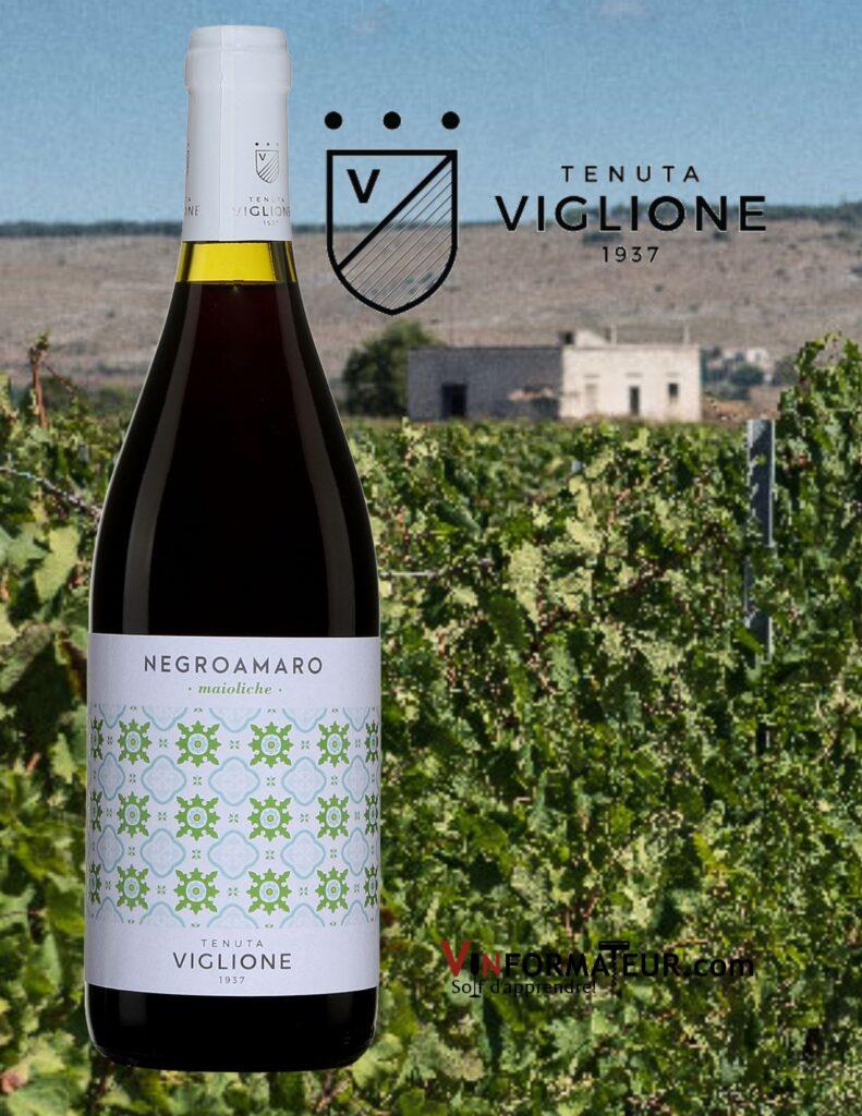Bouteille de Tenuta Viglione, Negroamaro, maioliche, Italie, Les Pouilles, 2019 avec vignobles