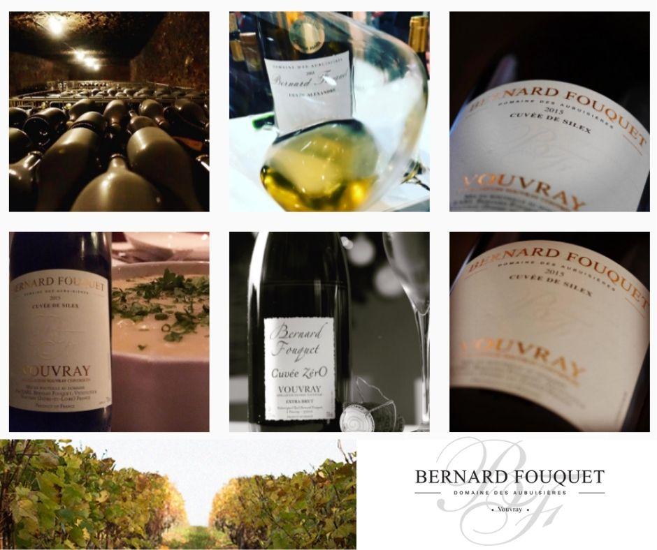 Bernard Fouquet, Domaine des Aubuissières, chai, vignobles et vins