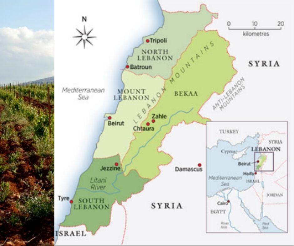 Carte viticole du Liban