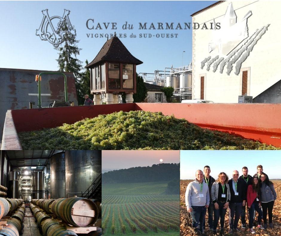 Caves du Marmandais, chai, vignobles et vignerons