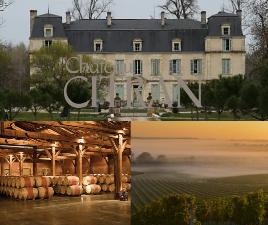 Château de Citran, chai, vignobles