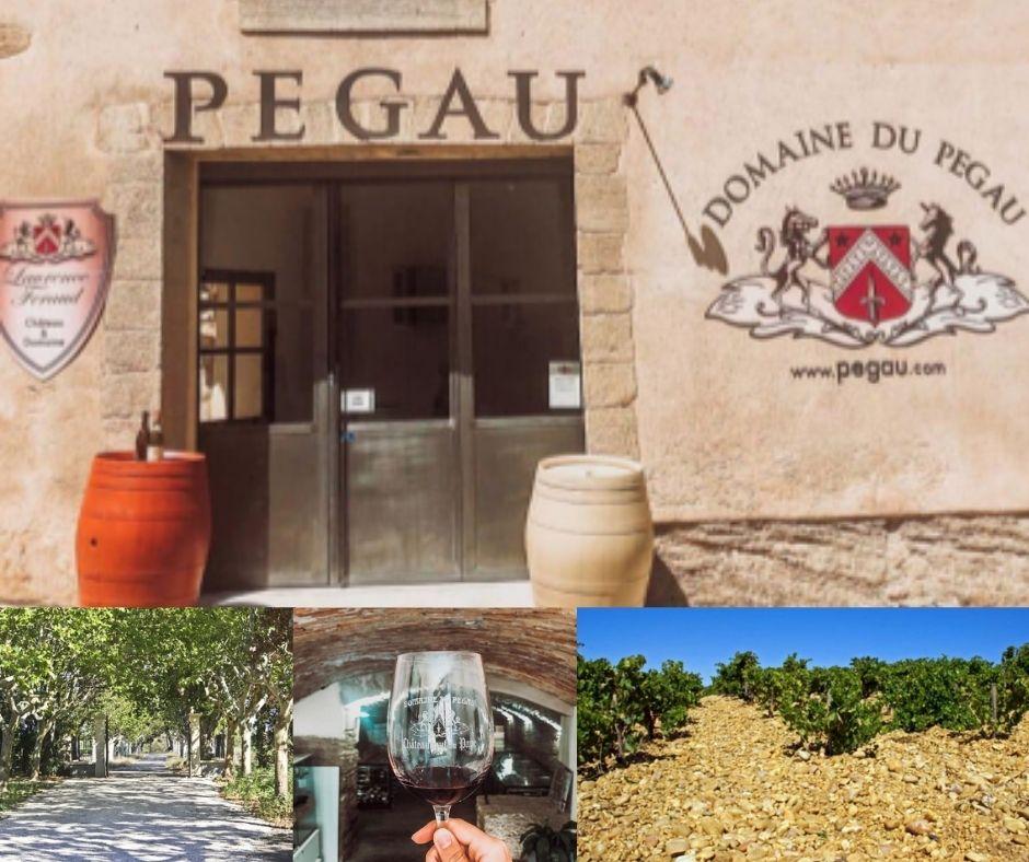 Château et Domaine Pégau, vignobles, chai