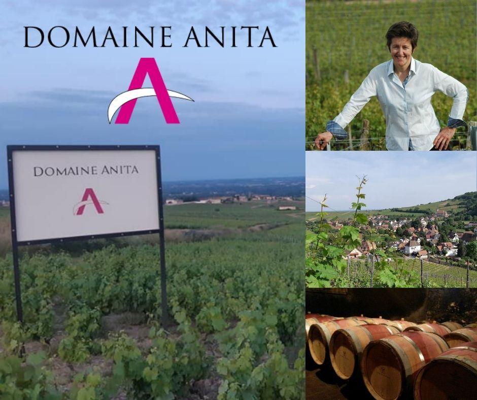 Domaine Anita: vignobles, Anita Kuhnel, chai