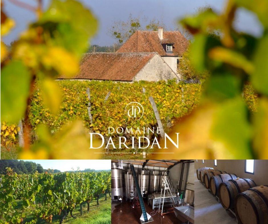 Domaine Daridan, vignobles et chai