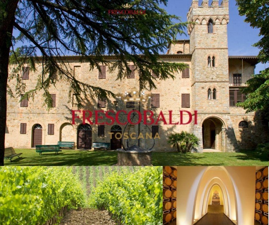 Maison Frescobaldi, château, chai et vignobles