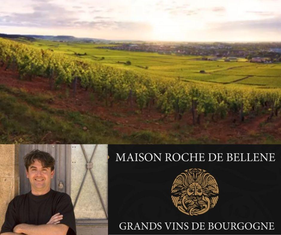 Maison Roche de Bellene, vignobles, Nicolas Potel