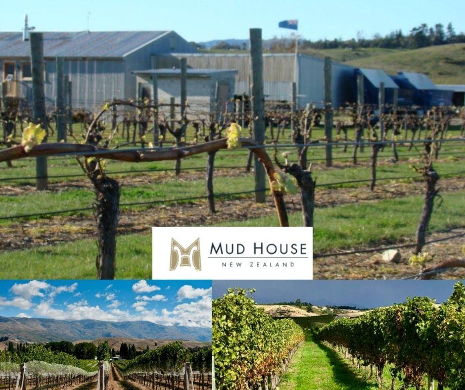 Mud House, chai et vignobles
