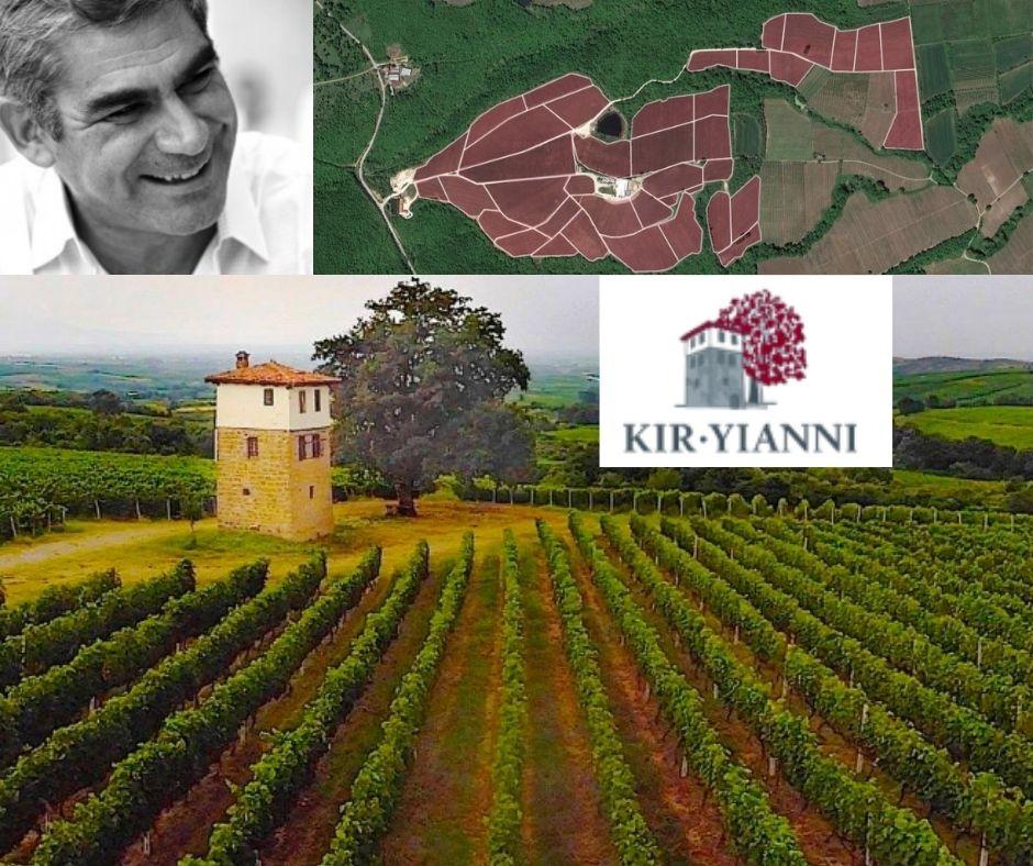 Maison Kir Yianni, Stellios Boutaris, carte viticole