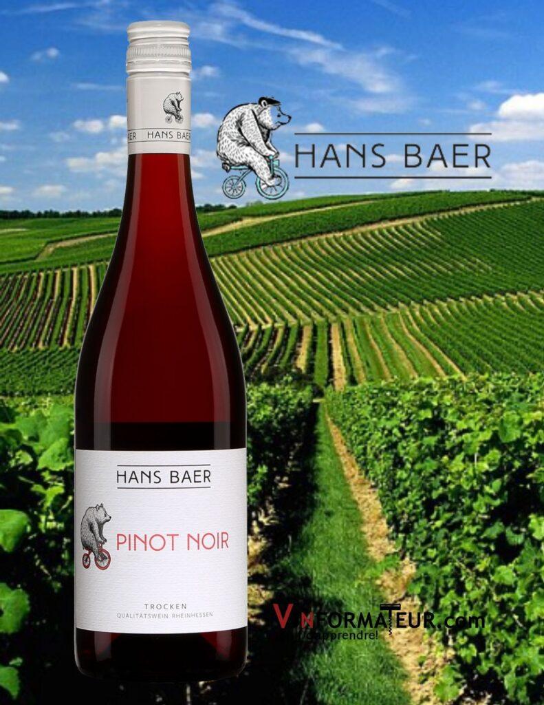 Bouteille de Pinot Noir, Hans Baer, Allemagne, Rheinhessen, Trocken, 2020 et vignoble