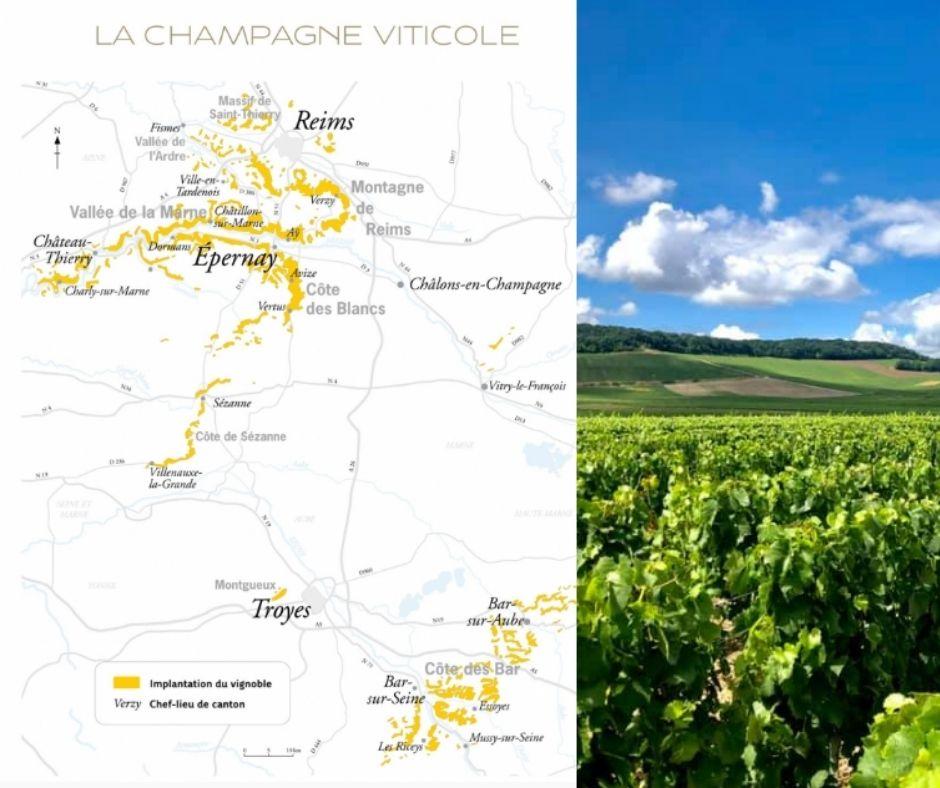 Carte viticole Champagne et vignoble de Champagne Lombard