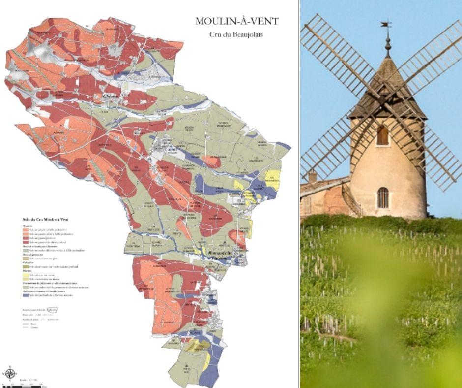 Carte viticole Moulin-à-Vent, Beaujolais