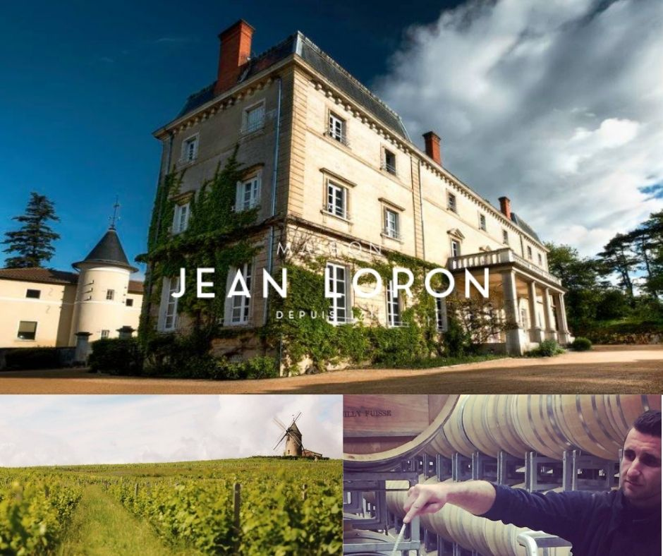 Maison Jean Loron, vignoble, chai et château