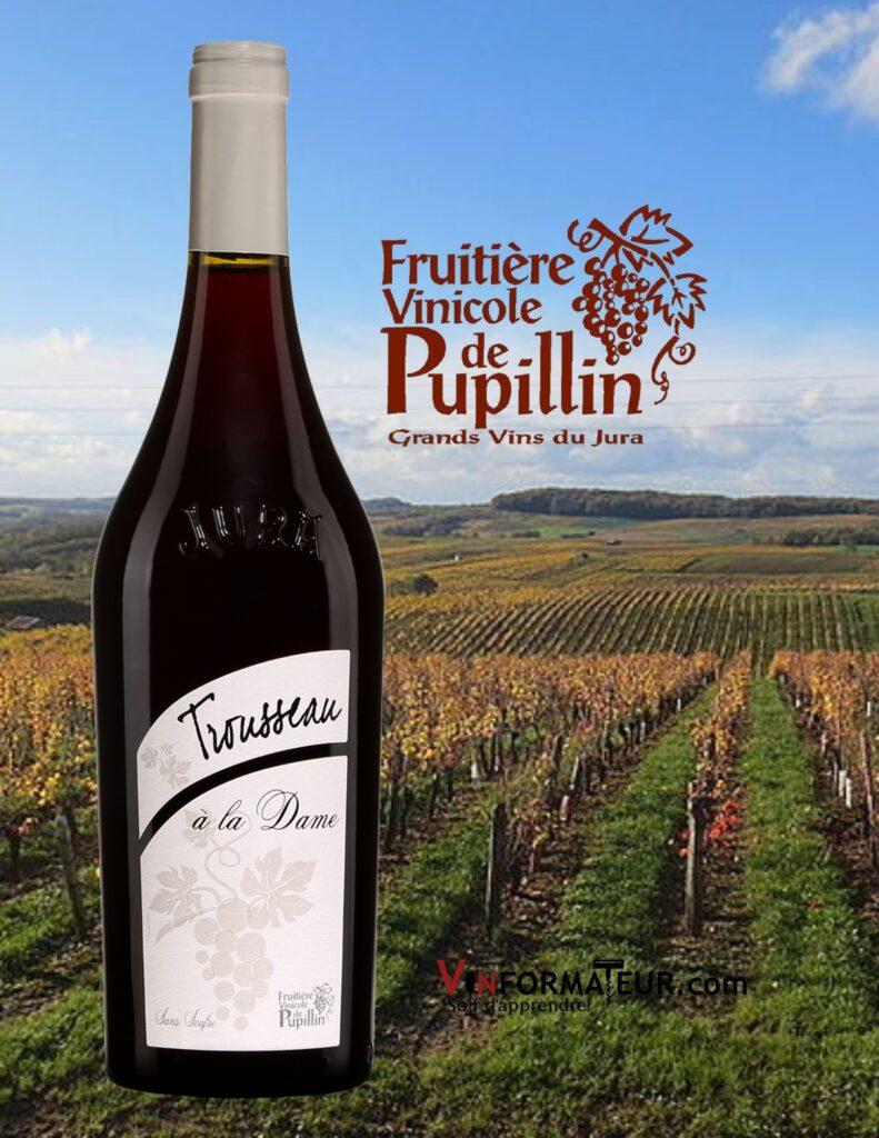 Bouteille de Arbois Pupillin, Trousseau à la Dame, France, Jura, 2020, vin rouge sans sulfites ajoutés