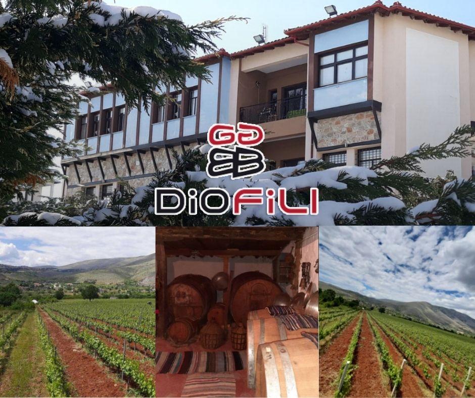 Diofili winery: chai et vignobles