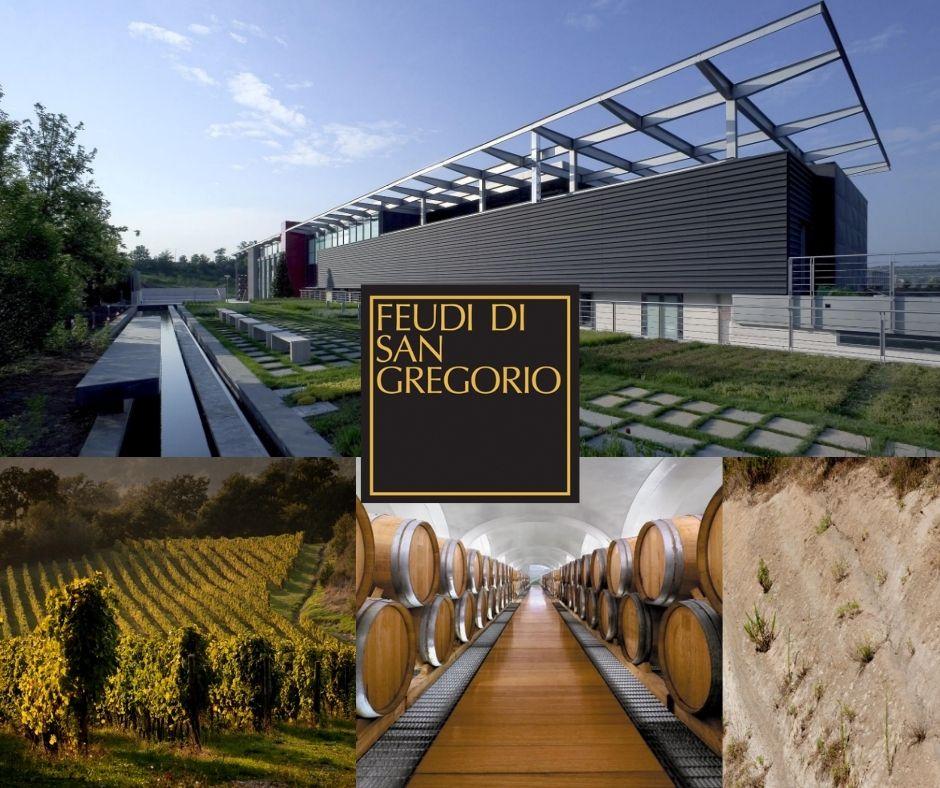 Feudi di San Gregorio: chai, vignobles